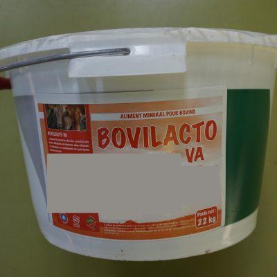 BOVILACTO VA: Leckeimer/seau à lécher